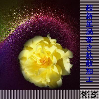 b0133752_1835555.jpg
