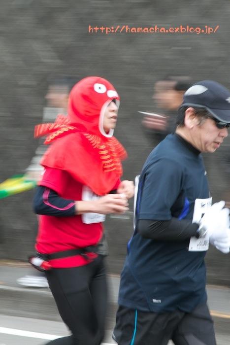 OME Marathon in Disguise_c0158775_19581998.jpg