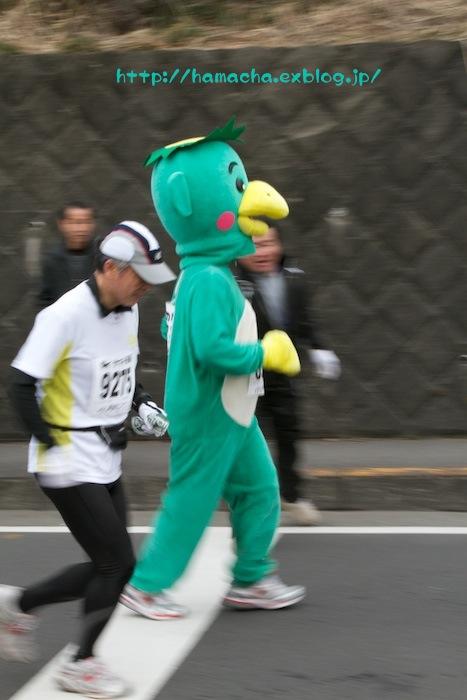 OME Marathon in Disguise_c0158775_19592178.jpg