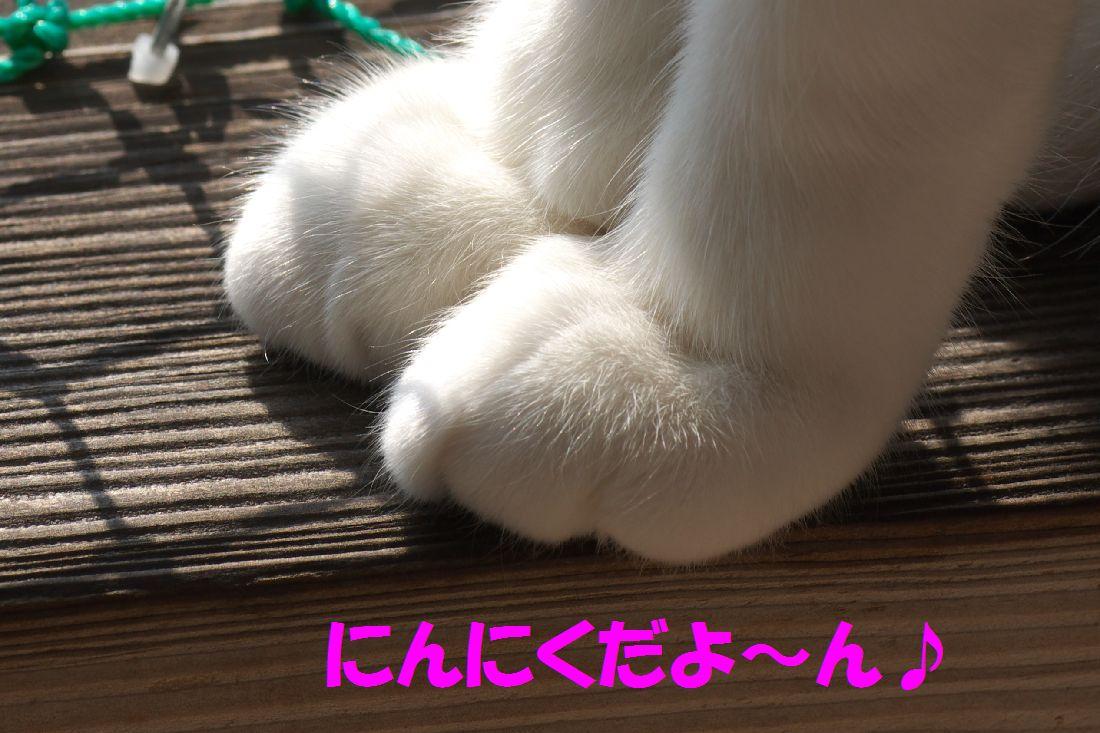 f0197682_0221922.jpg