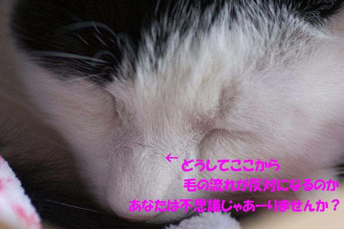 f0197682_023816.jpg