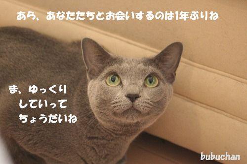 f0063729_15513732.jpg