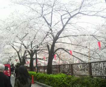 kiseki残り1カ月!!_f0137346_23585078.jpg