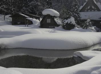 今日はとても暖かで・・・_d0129249_16393830.jpg