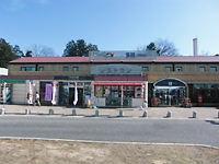 伏見稲荷にて~_c0217450_863327.jpg