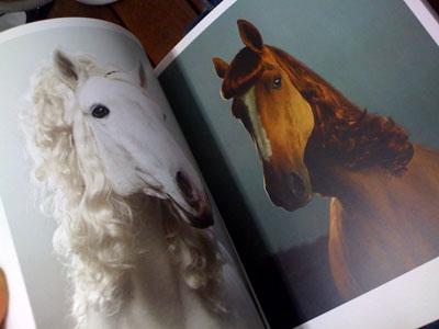 最近買った本☆_d0062651_1858088.jpg