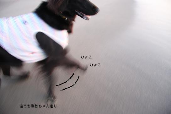 d0152182_2038250.jpg
