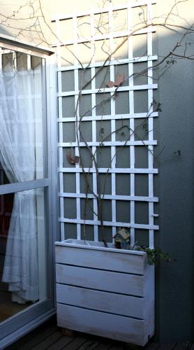 ◆植木箱にバラを植えかえる_e0154682_21415983.jpg