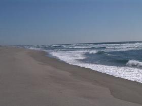 海の若者_c0125004_641527.jpg