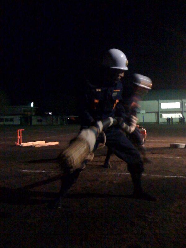 消防団訓練中〜_b0188106_18531354.jpg