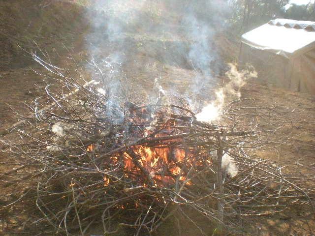 火遊び~~_a0125419_17501959.jpg