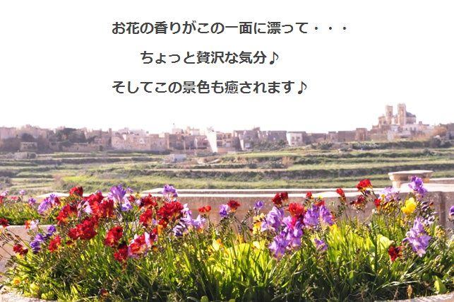 d0104926_0142835.jpg
