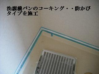 f0031037_2150389.jpg