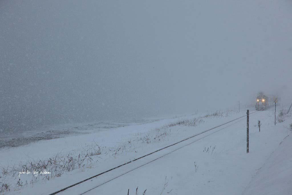 雪の中のノロッコ号より~_a0039860_19532758.jpg