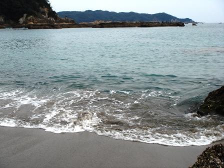 海の産物みーつけた_a0163160_23135854.jpg