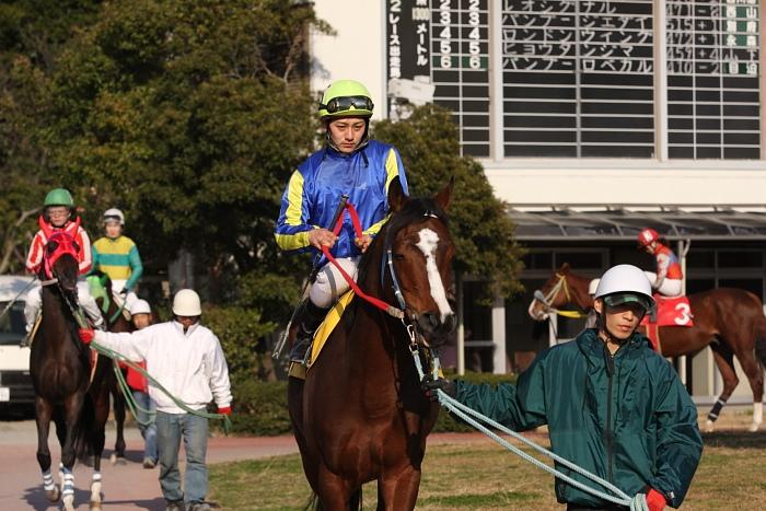2010年2月20日(土) 高知競馬 2R Cハ_a0077663_6345080.jpg