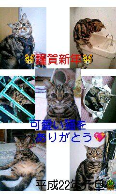 b0069471_954832.jpg