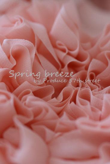 春色のイメージ_d0113182_1104010.jpg