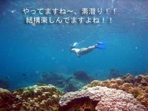 のんびりリゾートに♪ラチャヤイ島_f0144385_19404366.jpg