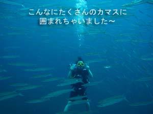 のんびりリゾートに♪ラチャヤイ島_f0144385_19412965.jpg