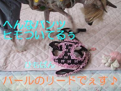 f0179203_1511817.jpg