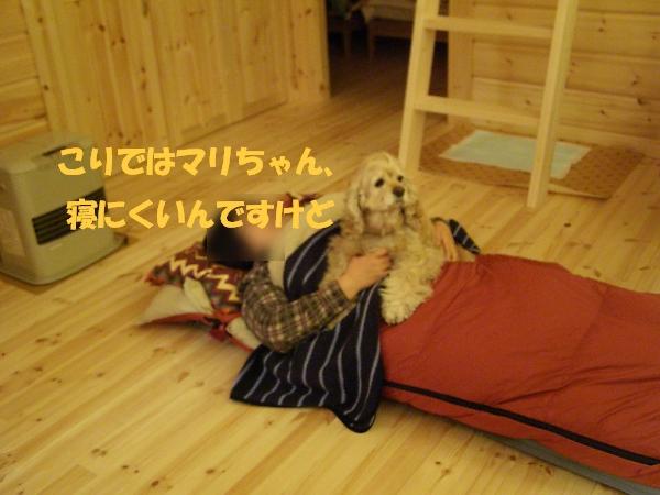 b0067012_0223058.jpg