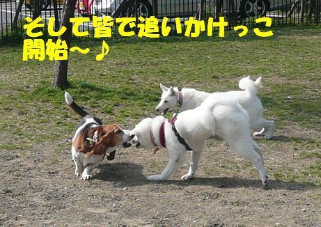 f0121712_1402278.jpg