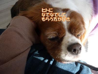 b0185323_022590.jpg