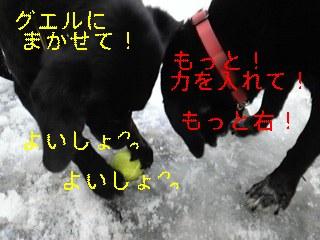 f0148927_1043620.jpg