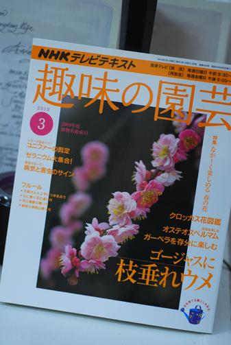 「趣味の園芸」テキストが発売になりました。_f0179528_1171275.jpg