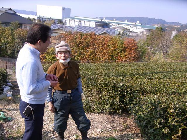 静岡茶の旅と素敵な夕日_f0070743_23495312.jpg