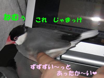 b0158061_22322991.jpg