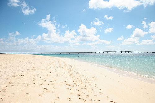 沖縄出張!!「市日和」に出店します。_e0181962_16433033.jpg