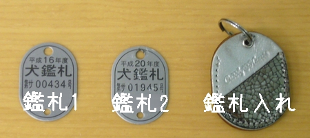 b0069169_17364135.jpg