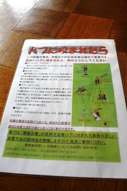 大阪~京都ツアー編♪ _f0074571_13511990.jpg