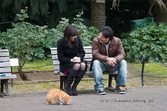 Cats In Hibiya Park #12_c0158775_20294246.jpg