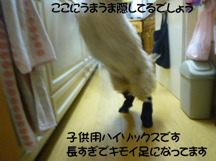 f0218182_18112084.jpg