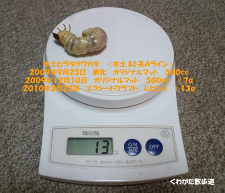 f0183484_1333414.jpg