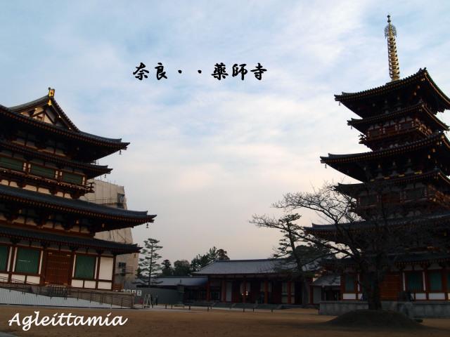 イタリア人 in  GIAPPONE (奈良)_c0179785_753595.jpg