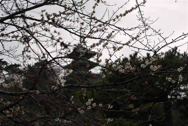 横浜・三渓園と元町をぶらぶらと_b0175688_23501699.jpg