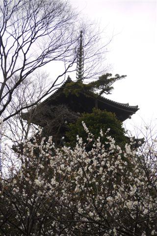 横浜・三渓園と元町をぶらぶらと_b0175688_23502881.jpg