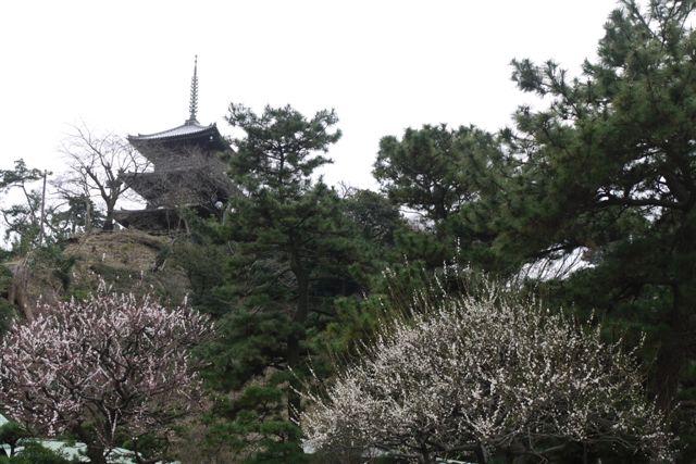 横浜・三渓園と元町をぶらぶらと_b0175688_23503846.jpg