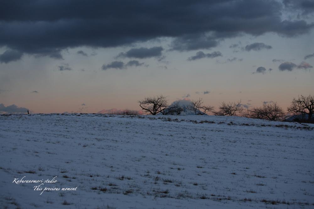 冬の夕暮れ_c0137403_14432242.jpg