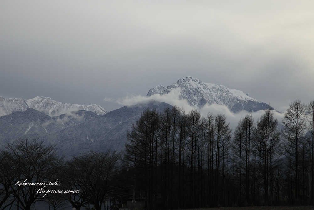 冬の夕暮れ_c0137403_14462321.jpg