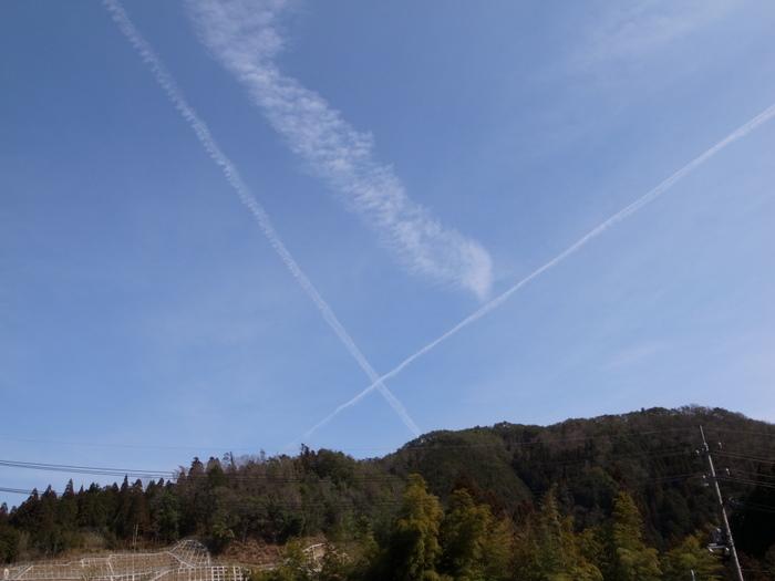 青空に飛行機雲_c0116915_2363090.jpg