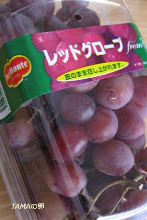 今日のコストコ札幌店_c0024729_236206.jpg