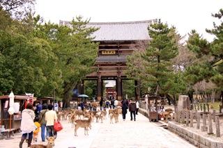 週末旅行 : 奈良1日目_d0010432_17185737.jpg
