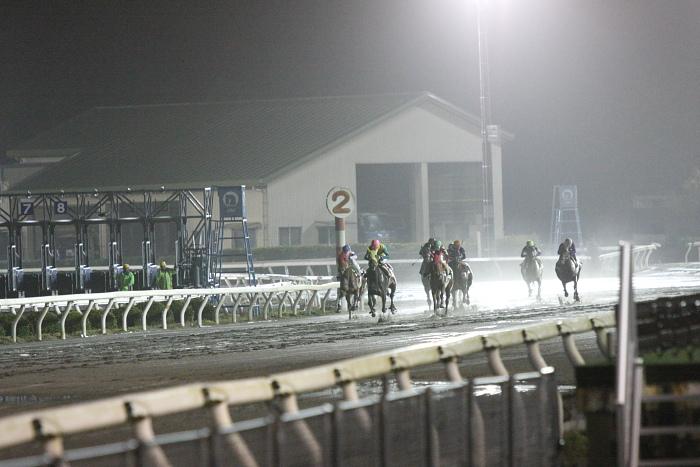 2010年2月26日(金) 高知競馬 11R 一発逆転 ファイナルレース D7 記者選抜_a0077663_12295285.jpg