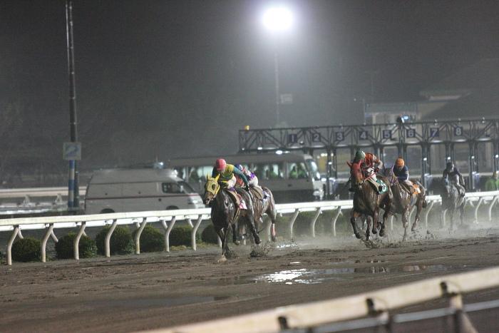 2010年2月26日(金) 高知競馬 11R 一発逆転 ファイナルレース D7 記者選抜_a0077663_12295924.jpg