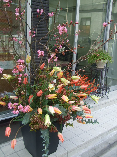 オークリーフ(BeROSEさん開店の花)_f0049672_1633650.jpg